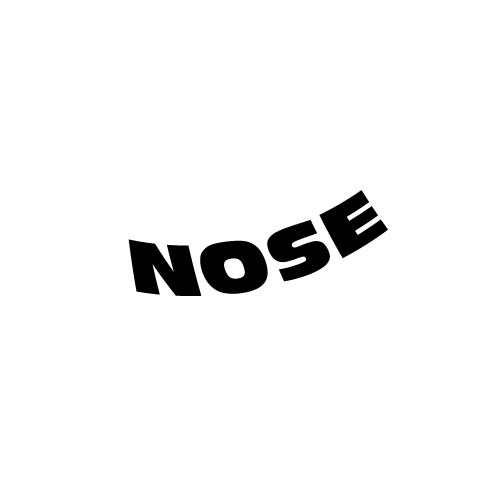 Dingbats Puzzle - Whatzit #245 - NOSE