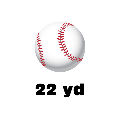Dingbats Puzzle - Whatzit #94 - (ball) 22 yd